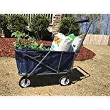 Impact Canopy Folding Wagon Transporter Steel Frame Beach Ca