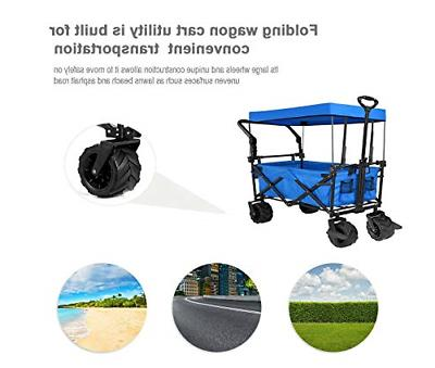 Tintonlife Push and Collapsible Utility