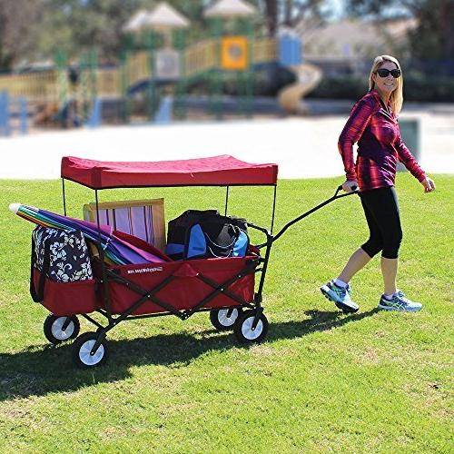 EasyGoProducts Wagon Collapsible Trunk of Standard Car